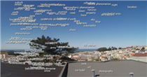 Google Cloud Vision Sightings