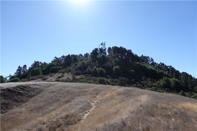 Round Top in Sibley Volcanic Regional Preserve