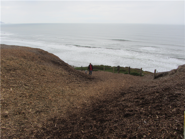 Sand Ladder at Fort Funston