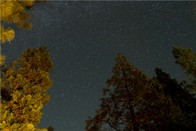 Stars from Pine Mountain Lake