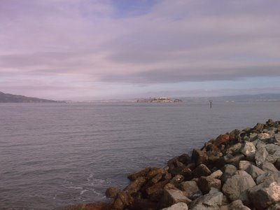 Alcatraz from Chrissy Field